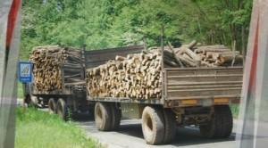 Пожар в склад за дървесина