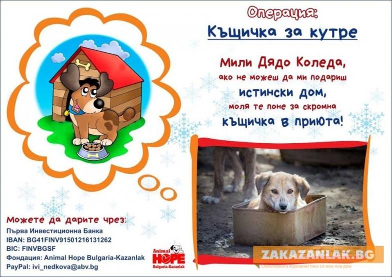 Да дарим къщичка за кутре