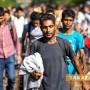ОБНОВЕНО! Заловиха 43 бежанци край язовир, близо до Раднево. Всички са млади мъже