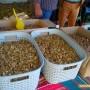 6 лева за кило орехи. Празник на макс
