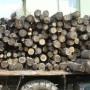Арест за незаконно притежание на дърва за огрев