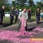 Министрите гледат новия проектзакон за розата след месец