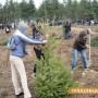 """Залесяват на язовир """"Копринка"""""""