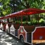 Атракционно влакче прави летни обиколки без почивен ден
