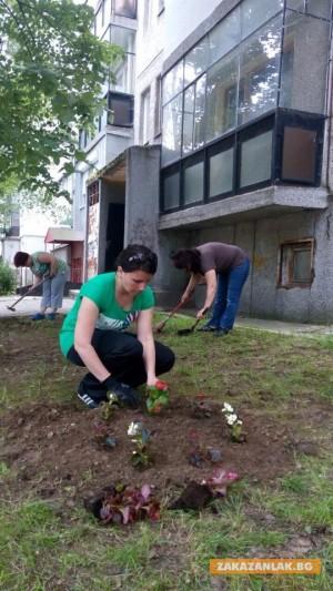 Общината да плаща на гражданите за облагородяване на зелени площи
