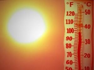 До 39 градуса днес