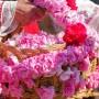 Туристически пътеводител за Празника на розата  създава Община Казанлък