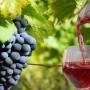 Поляците пият българско вино, българите - испанско