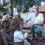 56 медицински сестри се грижат за децата в ясленска възраст