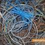 """Гост и домакин """"свили"""" кабел в Казанлък"""