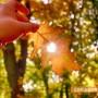 Октомври вдигна живака в Казанлък на 28 градуса