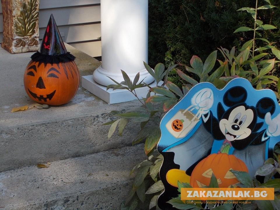 Три в едно: Балотажът:Будителите/Хелоуин - Панта рей!