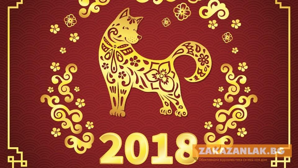 Без разточителство в Годината на Жълтото куче