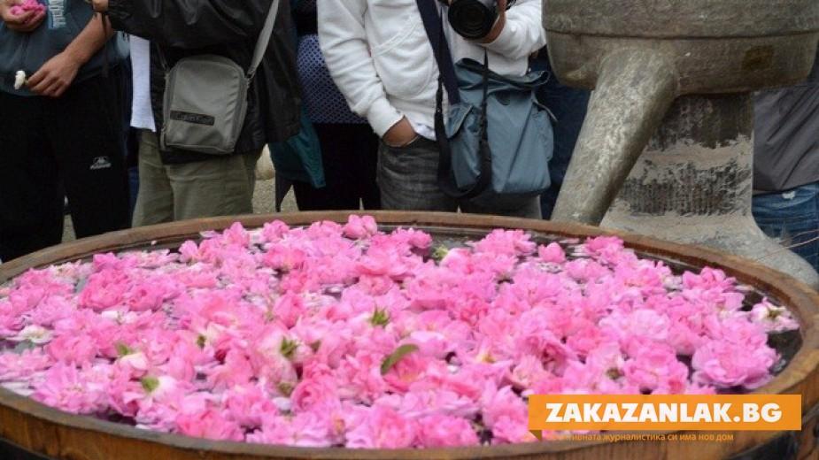 Забрана за износ на посадъчен материал искат розопроизводители