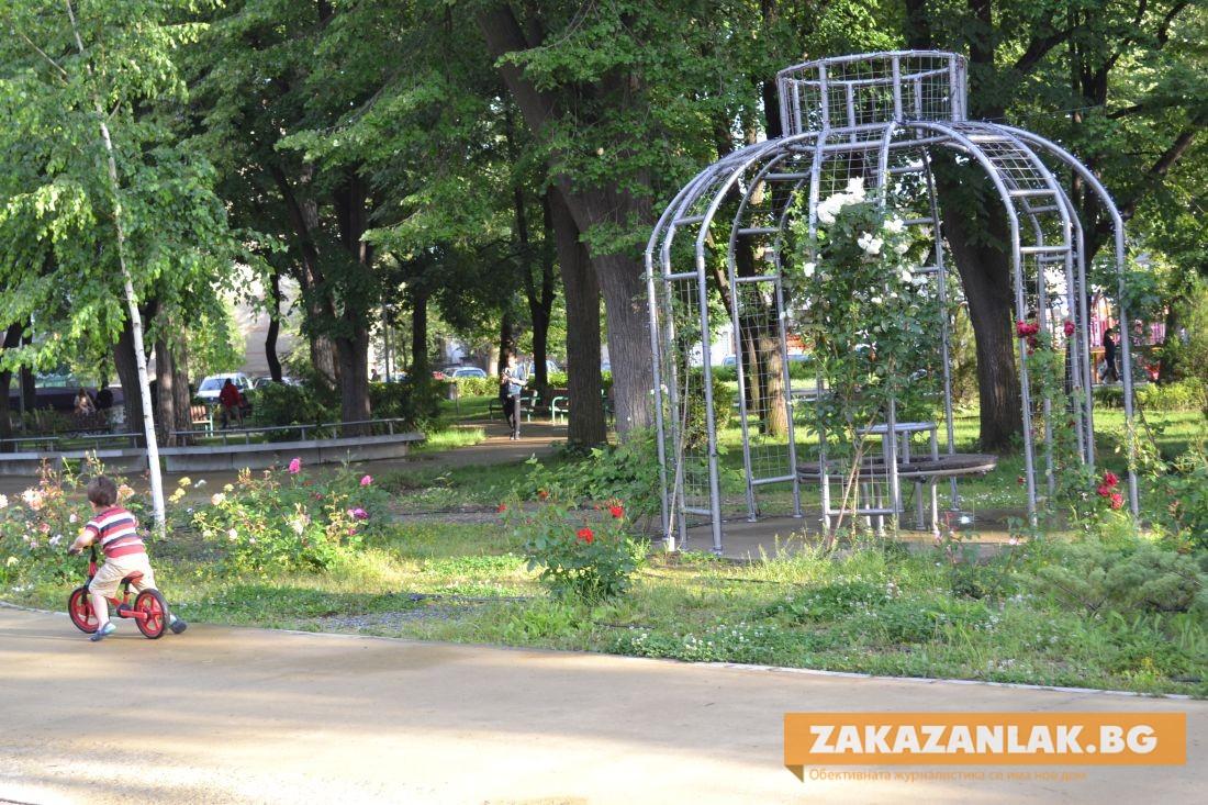 """За още красота в парк """"Розариум"""""""