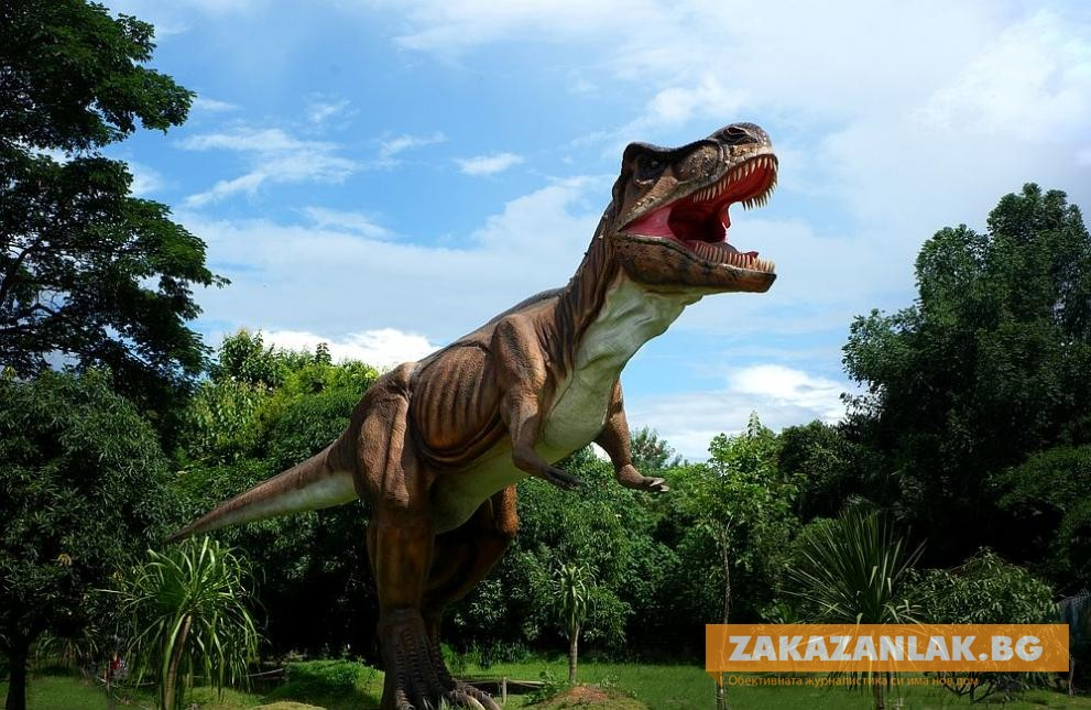 Дете откри яйца на динозавър на 66 милиона години