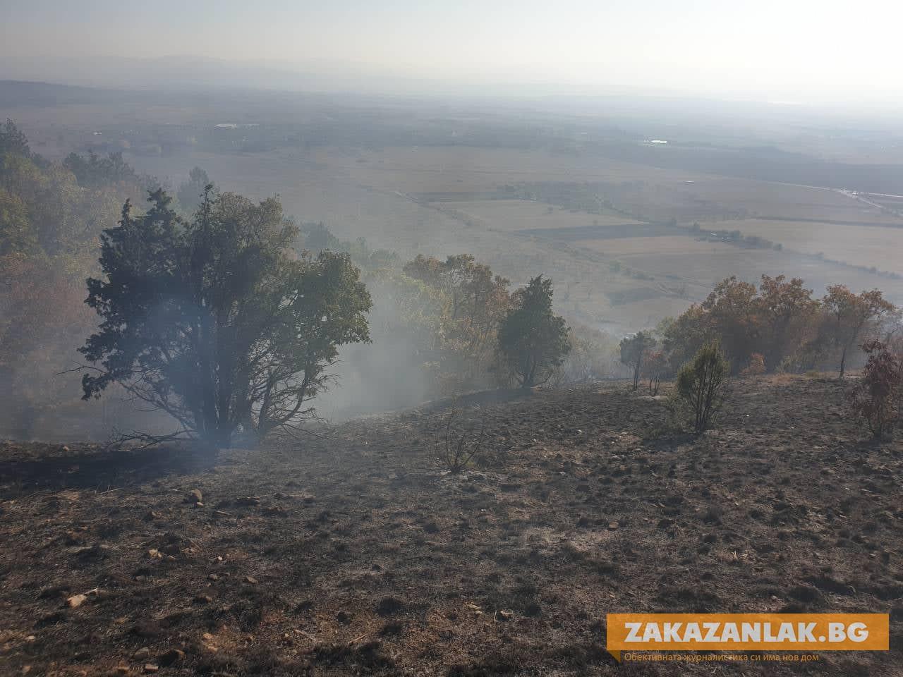 Барбекю подпали Балкана