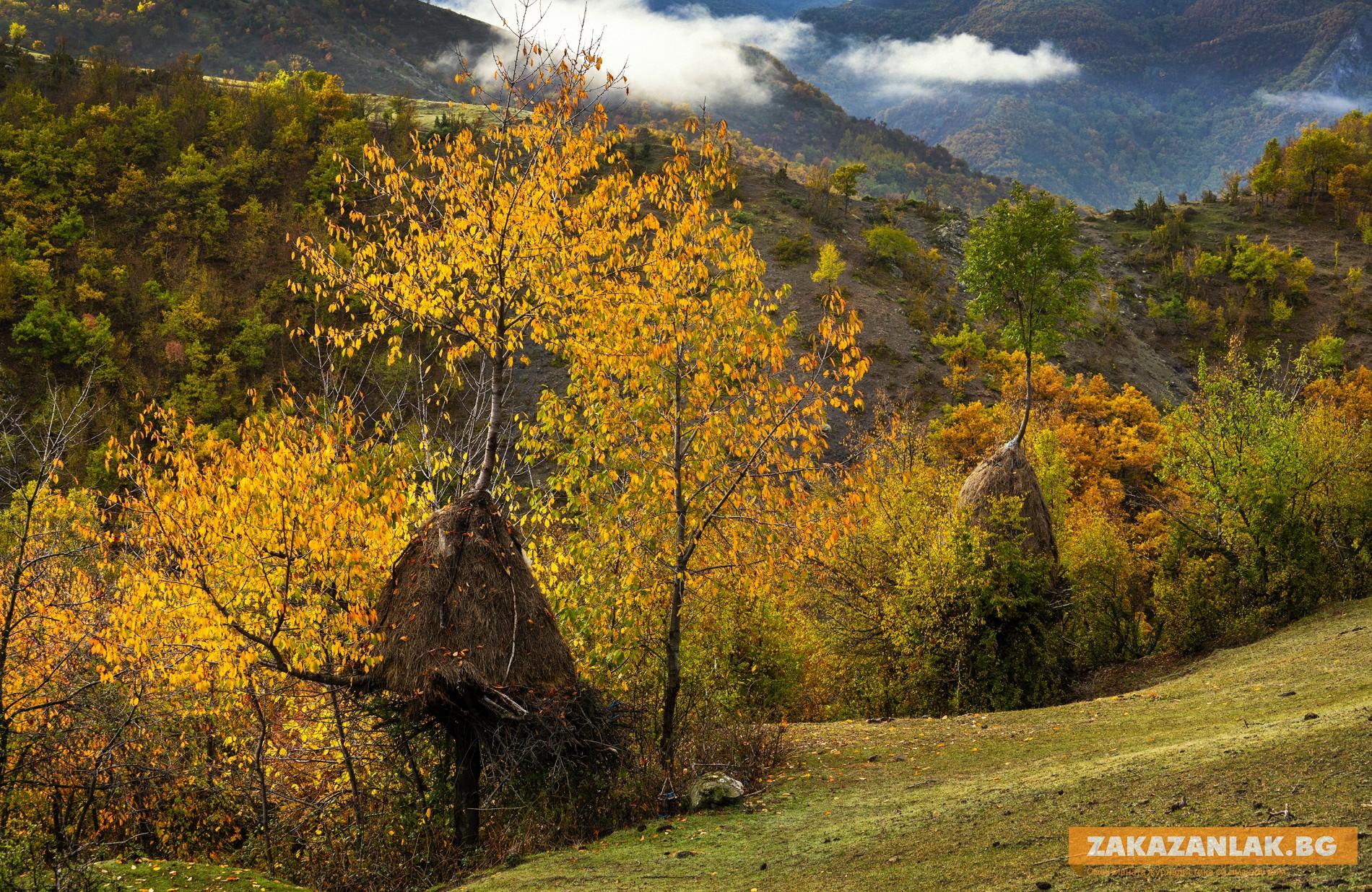 Зимни сезони с есенни фасони - Ахрида и Златко Латев